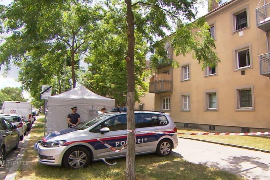 دو نفر از بازداشت شدگان ، یکی از آنها خردسال ، پس از کشف یک دختر مرده در وین